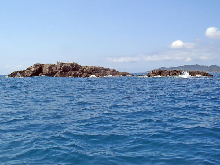 fishingtripmajorca.co.uk boat tours to Illot sa Galera Majorca