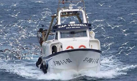 fishingtripmajorca.co.uk boat tours in Majorca with Cap Vermell