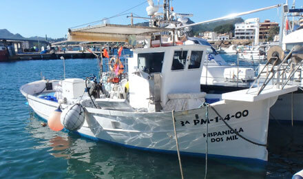 www.fishingtripmajorca.co.uk boat tours in Majorca with Hispaniola