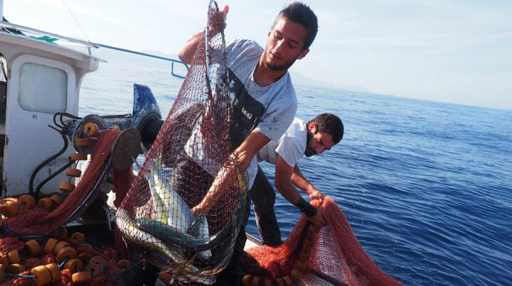 www.fishingtripmajorca.co.uk fishing excursions in Cala Ratjada with Virot