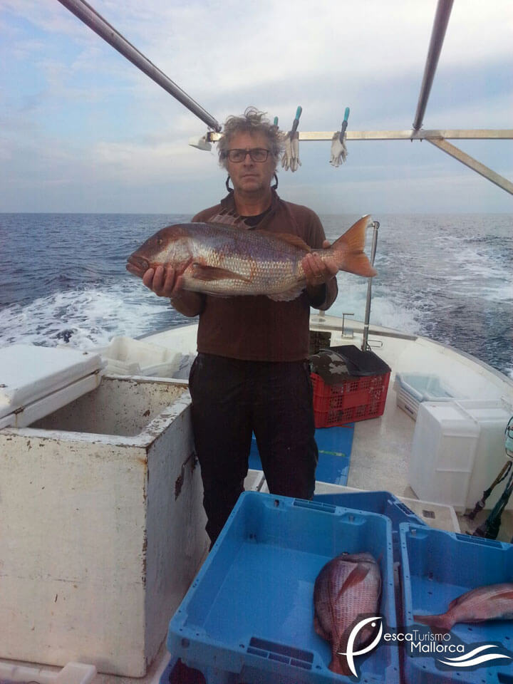 fishingtripmajorca.co.uk boat tours in Majorca with Hispaniola 2000