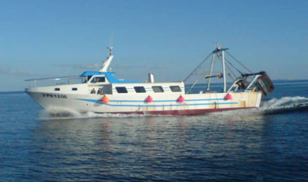 fishingtripmajorca.co.uk boat tours to Majorca with Paraguay