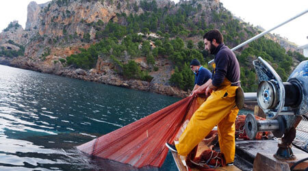 Fisherman for a day with Fishingtrip Majorca